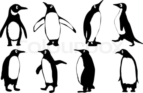 4828620-penguins