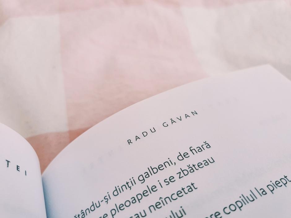 Recenzie Bestia obișnuinței de Radu Găvan